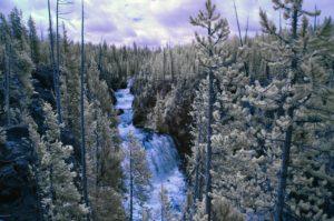 Waterfall - Yellowstone, Wyoming - 2018
