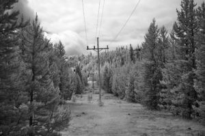 Telephone pole - Yellowstone, Wyoming - 2018